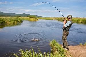 Какое наказание за ловлю рыбы сетями